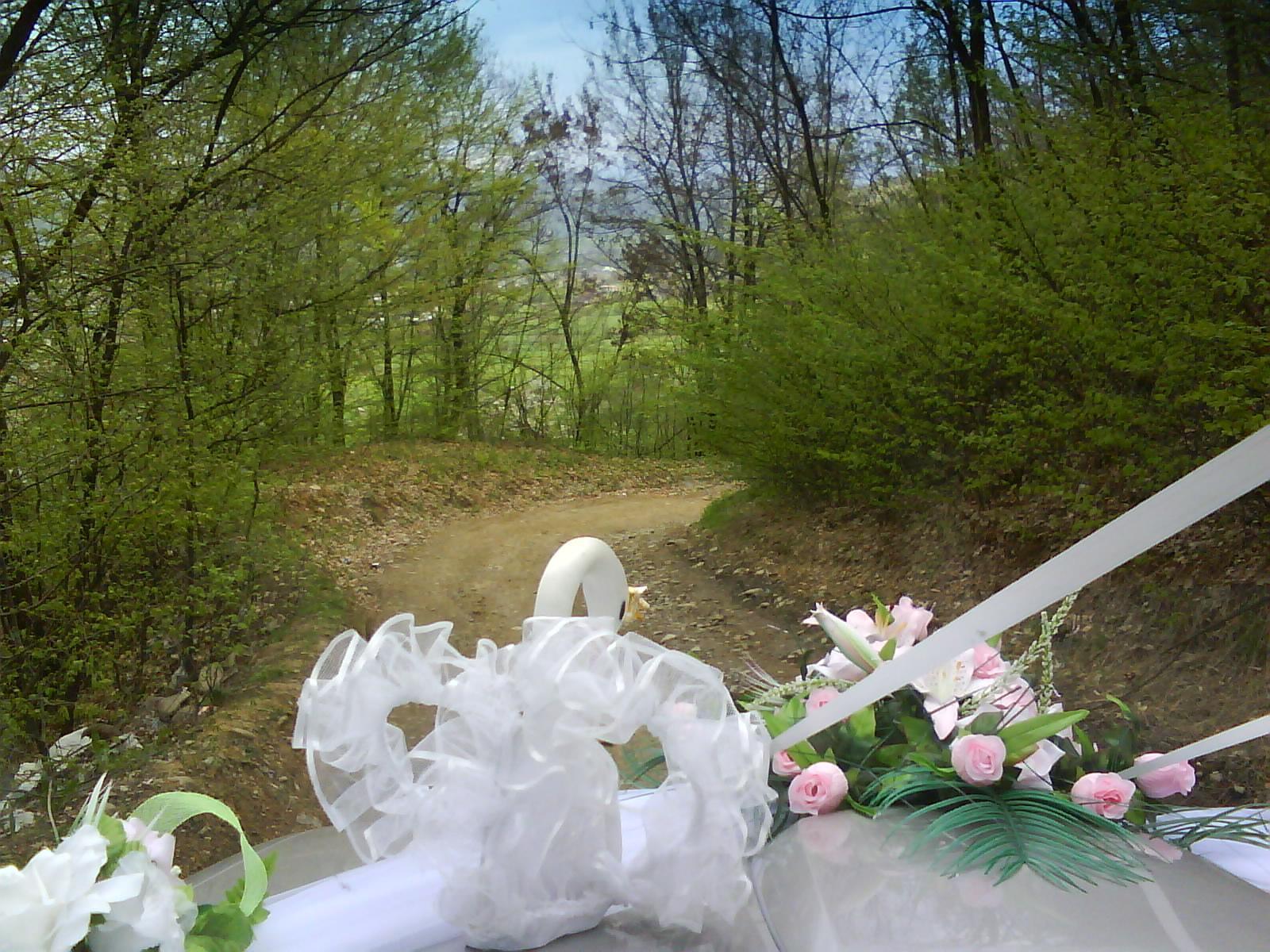Off Road свадьба