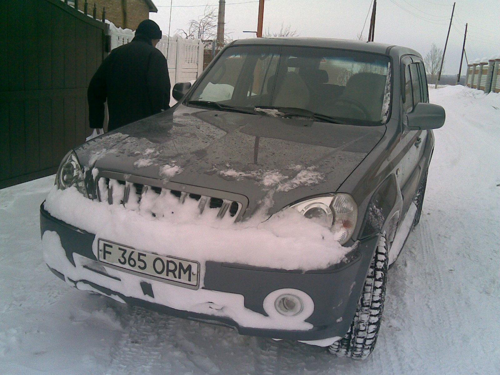 Наши зимы 1